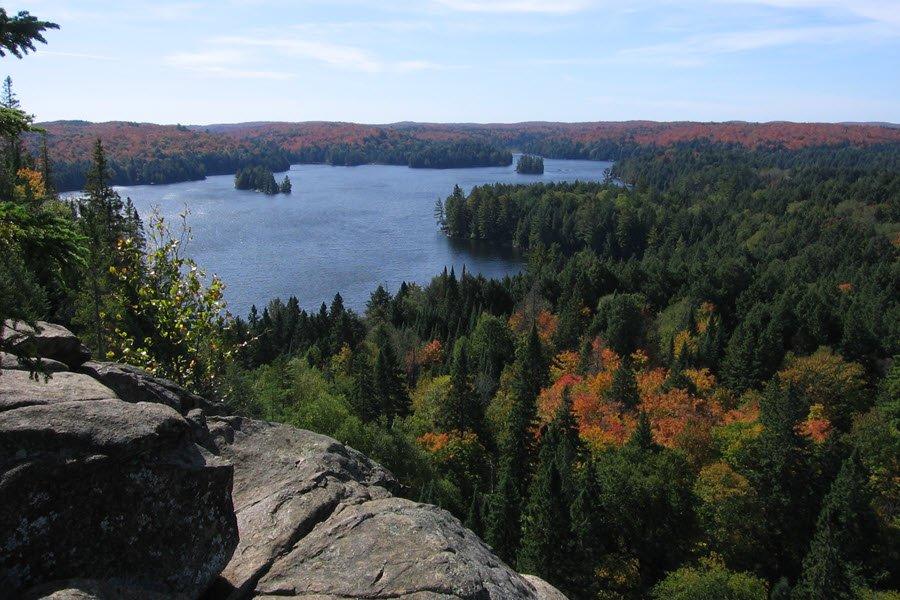 Algonquin_Cache_Lake_Lookout